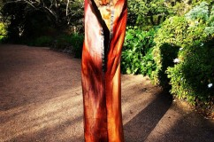 Bangalow Palm Sheaths
