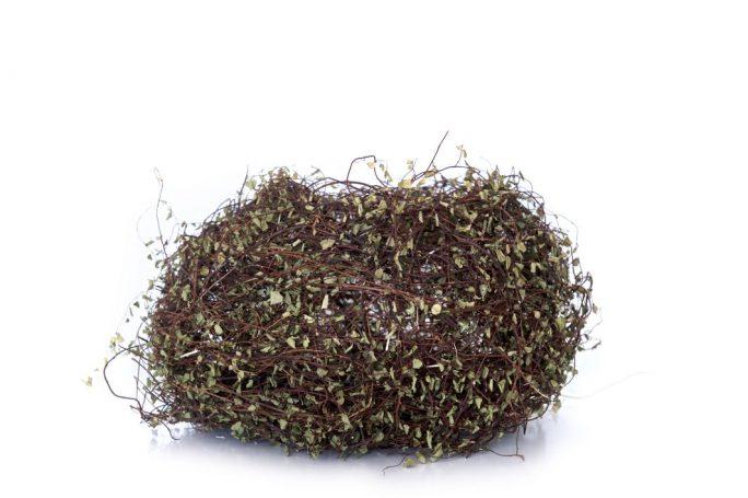 Nest-sculpture-Catriona-Pollard