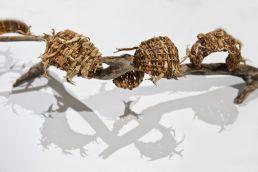 snake-in-the-grass-sculpture-catriona-pollard-3